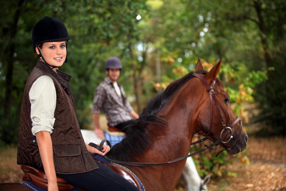 Pferdewirt Ausbildung