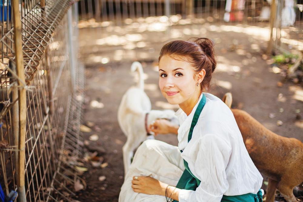 Gehalt Tierpfleger Tierheim